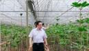 理想科技董事长焦家良:关于促进云南省中医药传承创新发展的建议
