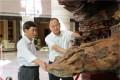 中国食用菌协会常务副会长高茂林一行莅临安发生物参观指导