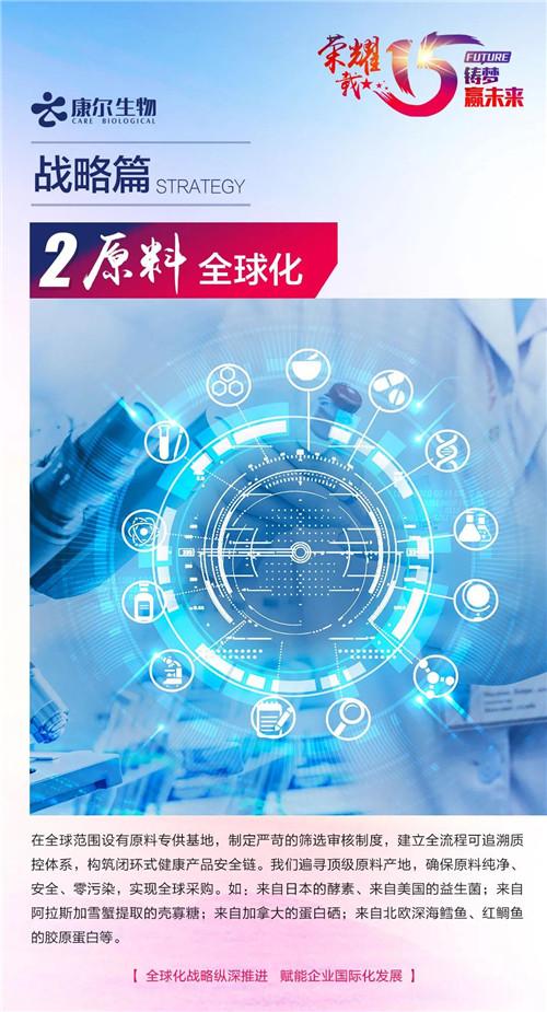 【安然荣耀十五载 铸梦赢未来·战略篇】全球化战略纵深推进 赋能企业国际化发展