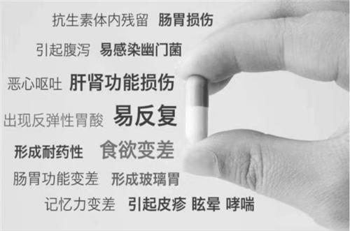 改善传统弊端!三生东方素养幽珞清益生菌粉的精准卡位战